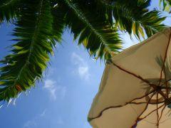 nature art,seascape art,photography,Underwater Umbrella