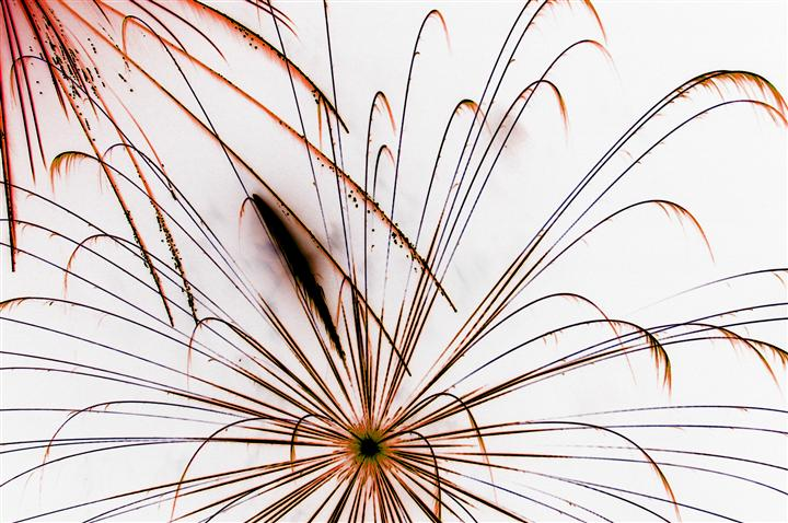 abstract art, photography, Firework Abstract