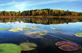 Landscape art,Nature art,photography,Northern Character