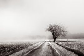landscape art,travel art,photography,The Brume