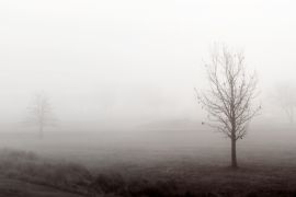 landscape art,photography,Gloom