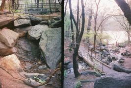 landscape art,nature art,photography,Central Park Diptych