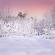 Landscape art,Nature art,photography,Lapland in Pink