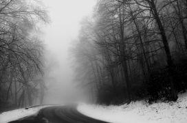 Landscape art,Nature art,photography,Through the Smoke