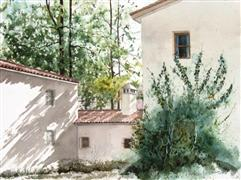 Architecture art,watercolor painting,Ivy Wall
