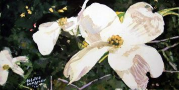 Nature art,Flora art,watercolor painting,Dogwood