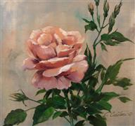 botanical art,oil painting,Petal Soft - Cantigny Rose #4