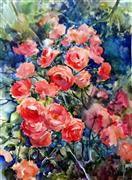 Nature art,Flora art,watercolor painting,Roses after the Rain