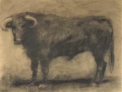 animals art,western art,charcoal drawing,The Bull