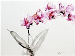 Still Life art,Flora art,watercolor painting,Orchids 2