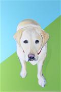 Animals art,Pop art,Realism art,Representational art,acrylic painting,Trevor