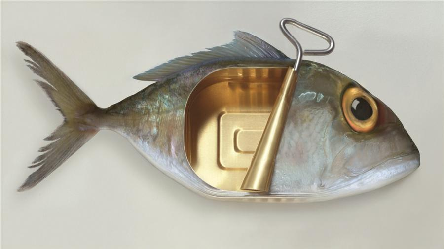 Original art for sale at UGallery.com | Canned Fish by ART GRAFTS | $350 |  | 12' h x 18' w | ..\art\photography-Canned-Fish
