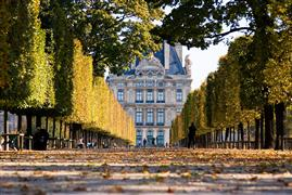 Architecture art,Travel art,photography,Tuileries Gardens and Louvre in Fall, Paris
