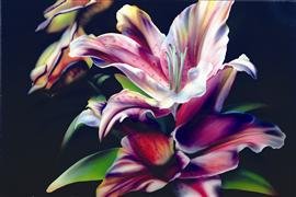 nature art,still life art,botanical art,other media,Lilly Pride