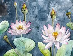 nature art,botanical art,watercolor painting,Lotus Flowers
