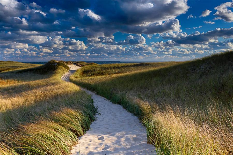 Original art for sale at UGallery.com | Dune Path by Katherine Gendreau | $325 | photography | 36' h x 24' w | ..\art\photography-Dune-Path