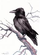 animals art,nature art,watercolor painting,Crow on the Tree
