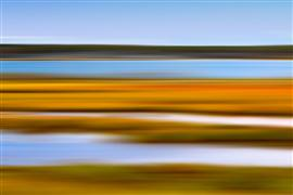 Abstract art,Seascape art,photography,Autumn Marsh