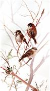 Animals art,Nature art,watercolor painting,Three Sparrows