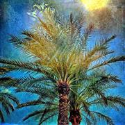 Nature art,Flora art,photography,Palm Trees and the Sun