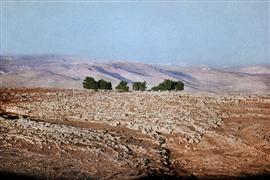 Landscape art,Representational art,Vintage art,photography,Outcroppings, the Negev