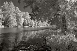 Landscape art,Nature art,Surrealism art,Representational art,photography,Bayou Teche, Louisiana