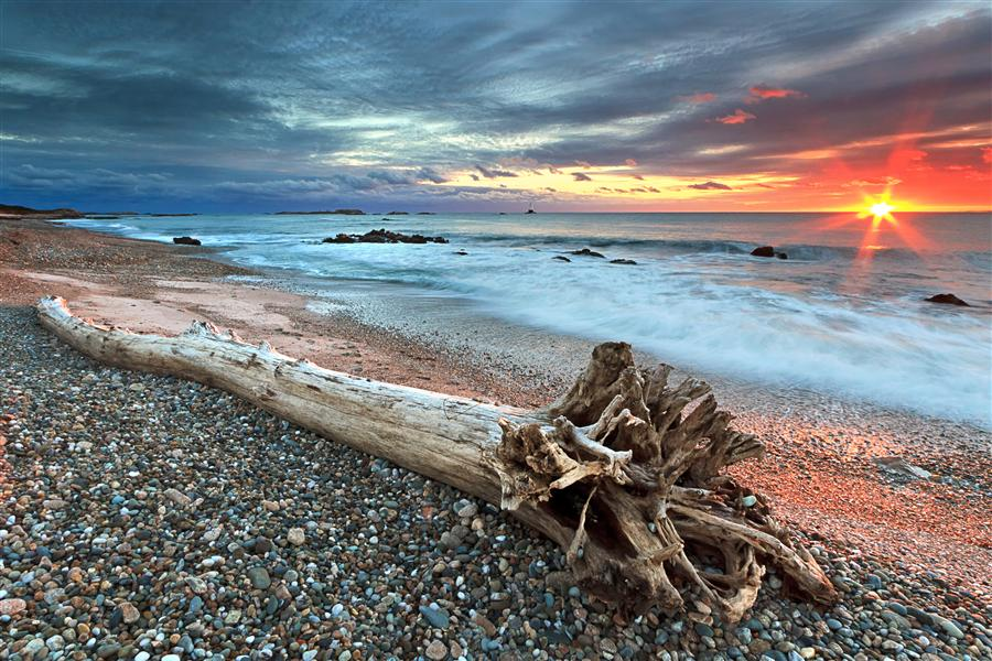Original art for sale at UGallery.com | Sakonnet Driftwood by Katherine Gendreau | $355 | photography | 36' h x 24' w | ..\art\photography-Sakonnet-Driftwood