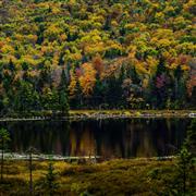 Landscape art,Nature art,Representational art,photography,Autumn at Burpee Pond