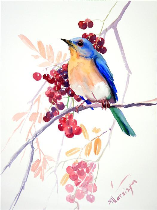 Eastern Bluebird and Berries SUREN NERSISYAN