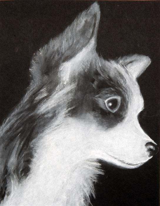 Original art for sale at UGallery.com | My Dog by BOYS & GIRLS CLUBS OF SAN FRANCISCO | $100 | Chalk drawing | 11' h x 9' w | ..\art\chalk-drawing-My-Dog