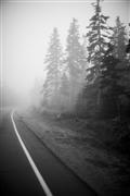 Nature art,Travel art,Representational art,photography,Acadia National Park, #3