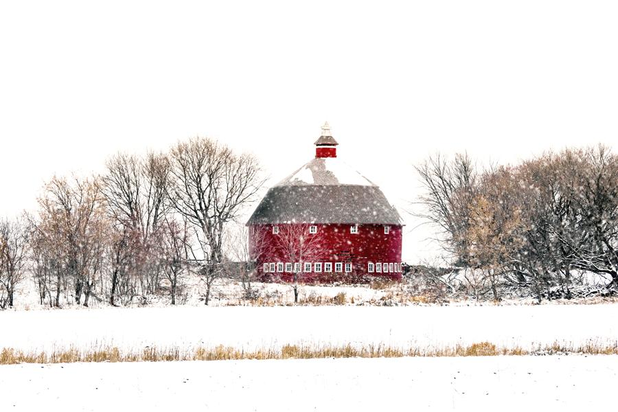 Original art for sale at UGallery.com | First Snowfall by Lorianne Ende | $275 | photography | 36' h x 24' w | ..\art\photography-First-Snowfall