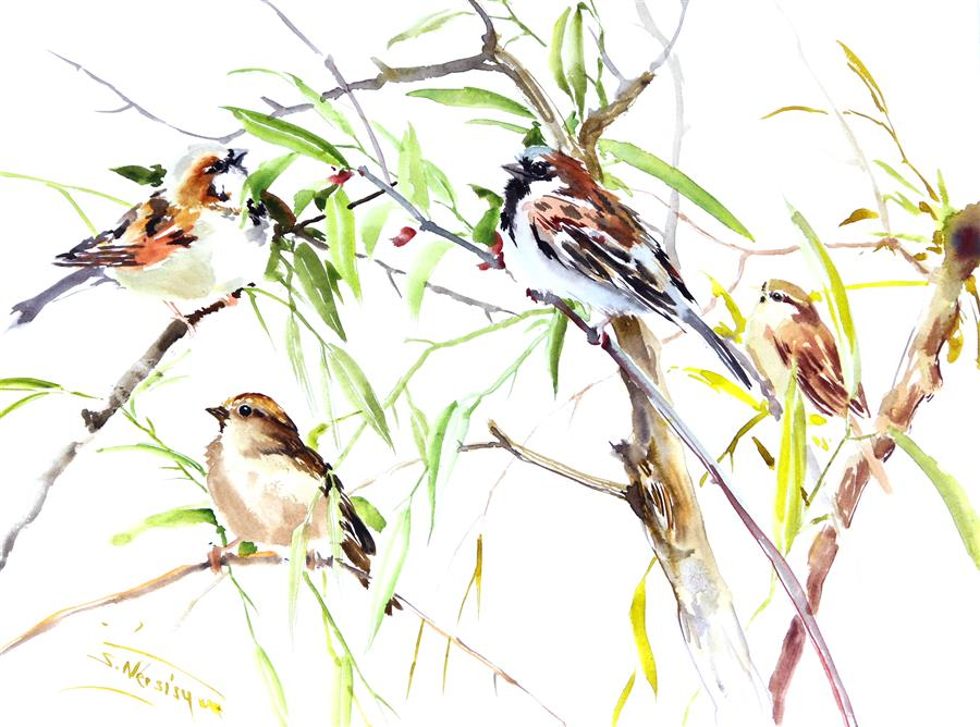 Original art for sale at UGallery.com | Sparrows by SUREN NERSISYAN | $400 | Watercolor painting | 12' h x 16' w | ..\art\watercolor-painting-Sparrows