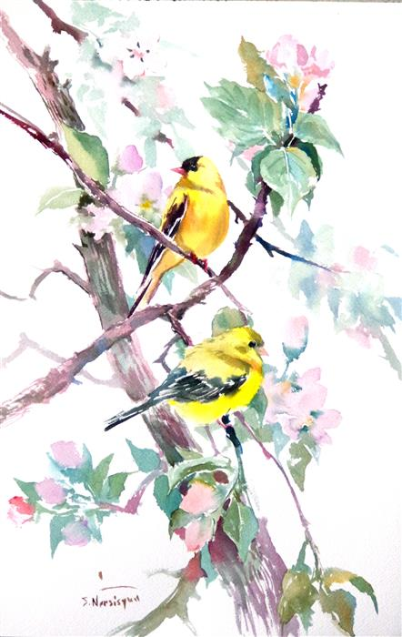 Original art for sale at UGallery.com | American Goldfinch and Apple Blossom by SUREN NERSISYAN | $400 |  | 18' h x 12' w | ..\art\watercolor-painting-American-Goldfinch-and-Apple-Blossom