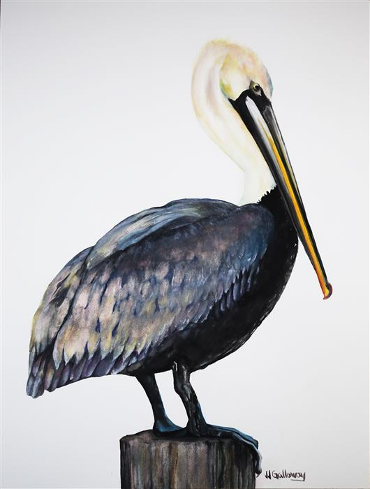 Original art for sale at UGallery.com | Pelican by JJ GALLOWAY | $625 |  | 24' h x 18' w | ..\art\watercolor-painting-Pelican-46805