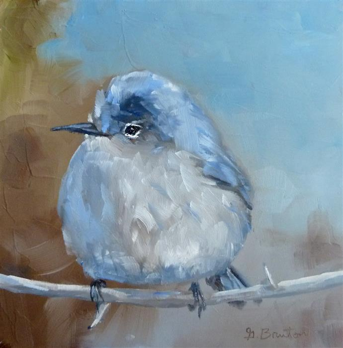 Original art for sale at UGallery.com | Blue-Gray Gnatcatcher by GARY BRUTON | $300 | Oil painting | 6' h x 6' w | ..\art\oil-painting-Blue-Gray-Gnatcatcher