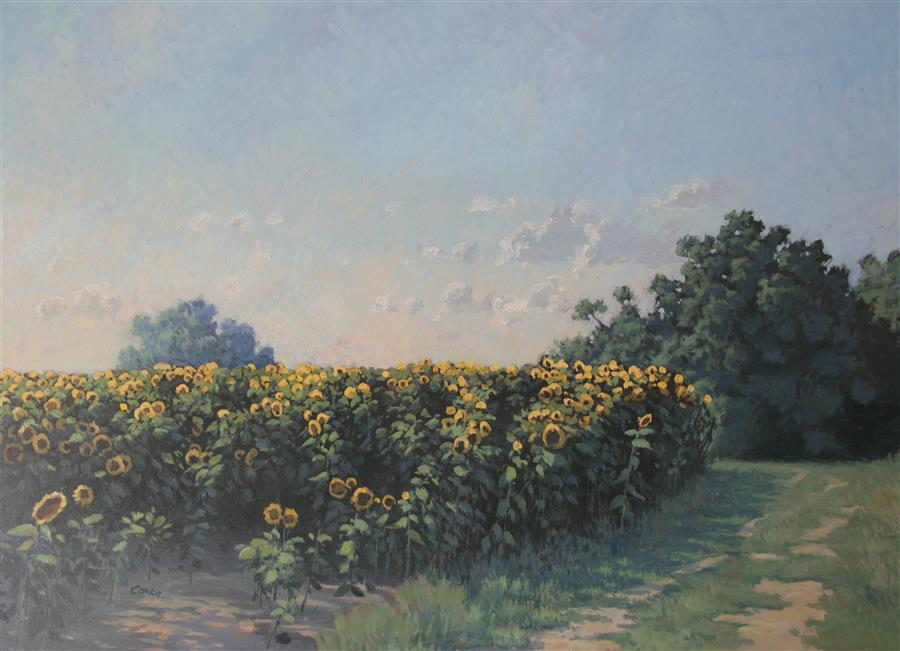Original art for sale at UGallery.com | Afternoon Sunflowers by STEFAN CONKA | $1,650 |  | 24' h x 31.4' w | ..\art\oil-painting-Afternoon-Sunflowers