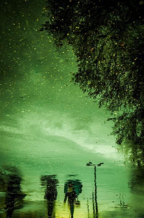 Original art for sale at UGallery.com   Rainy Day by Alicja Brodowicz   $50   photography   24' h x 16' w   ..\art\photography-Rainy-Day