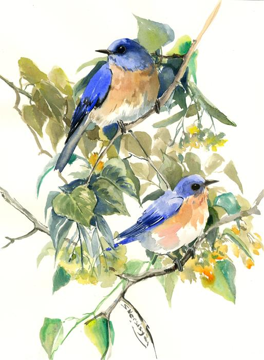 Original art for sale at UGallery.com | Bluebirds on Linden Tree by Suren Nersisyan | $400 | watercolor painting | 16' h x 12' w | ..\art\watercolor-painting-Bluebirds-on-Linden-Tree