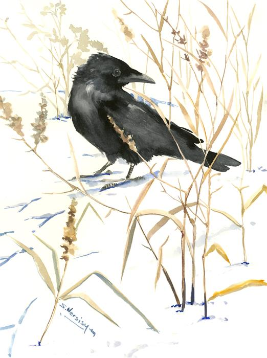 Original art for sale at UGallery.com | Raven on the Snow and Dry Grasses by SUREN NERSISYAN | $325 |  | 16' h x 12' w | ..\art\watercolor-painting-Raven-on-the-Snow-and-Dry-Grasses