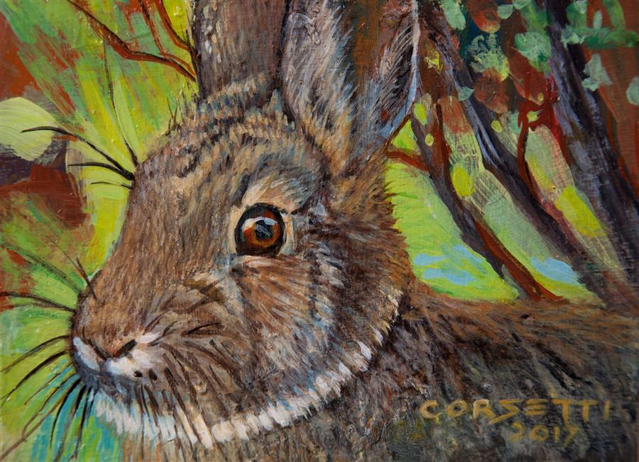 Original art for sale at UGallery.com | Cotton Tail by ROBERT CORSETTI | $475 |  | 4.25' h x 5.87' w | ..\art\acrylic-painting-Cotton-Tail-53139