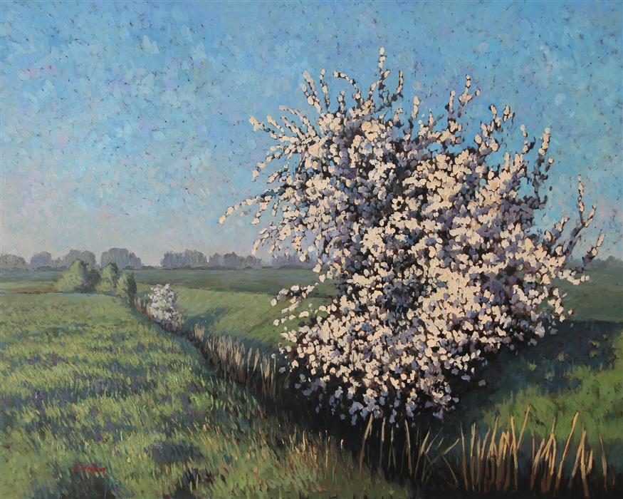 Original art for sale at UGallery.com | Wild Plum Blossoms by STEFAN CONKA | $1,800 |  | 23.6' h x 29.5' w | ..\art\oil-painting-Wild-Plum-Blossoms