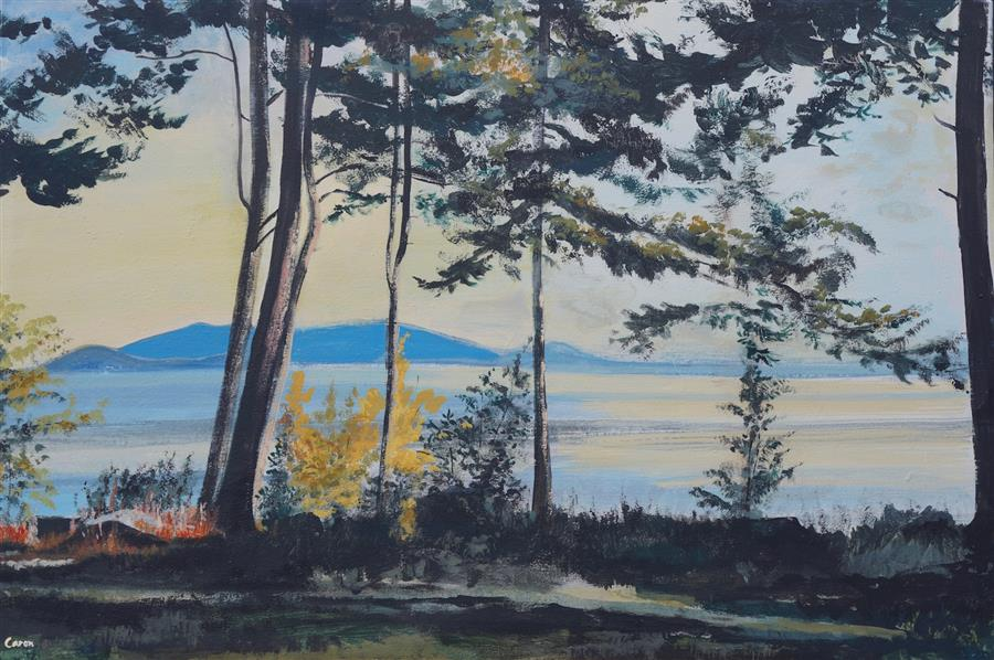 Original art for sale at UGallery.com | Morning on Lopez Island by Sidonie Caron | $3,100 | acrylic painting | 24' h x 36' w | ..\art\acrylic-painting-Morning-on-Lopez-Island