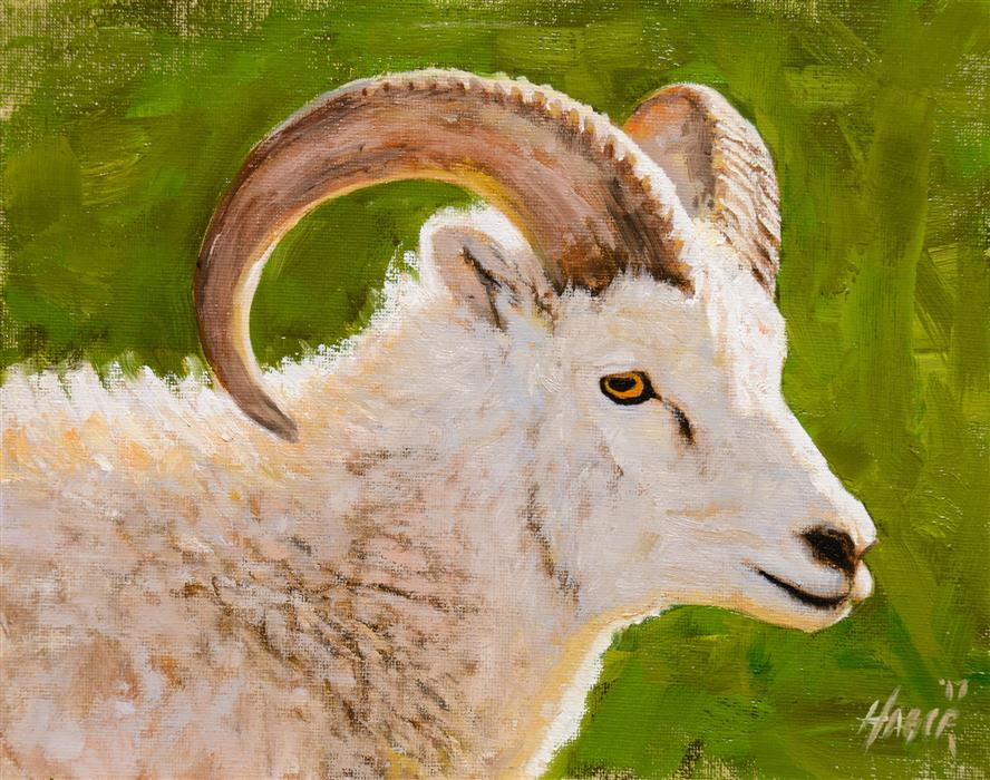 Original art for sale at UGallery.com | Dahl Sheep Portrait by NATHAN HAGER | $425 |  | 8' h x 10' w | ..\art\oil-painting-Dahl-Sheep-Portrait