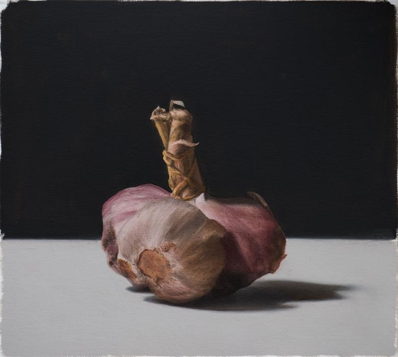 Original art for sale at UGallery.com | Garlic by Daniel Caro | $650 | oil painting | 7.08' h x 7.87' w | ..\art\oil-painting-Garlic-58461