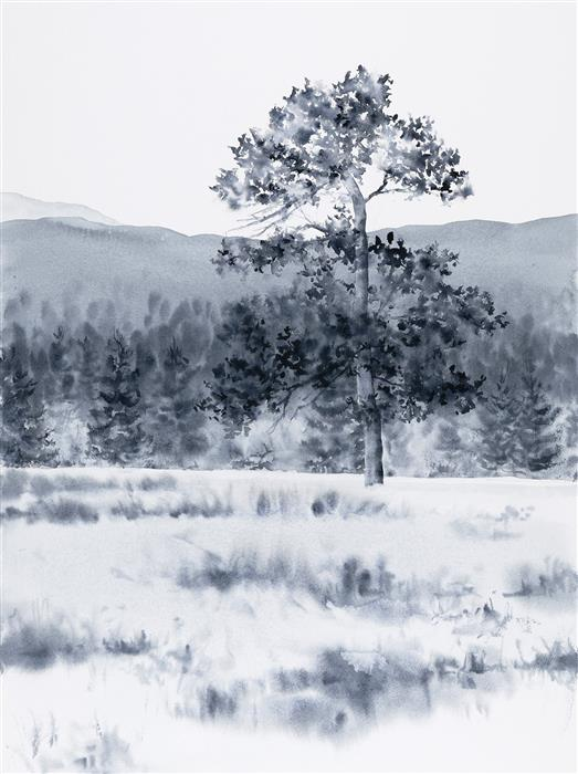 Original art for sale at UGallery.com | Rocky Mountain Native by Jill Poyerd | $1,300 | watercolor painting | 18' h x 24' w | ..\art\watercolor-painting-Rocky-Mountain-Native