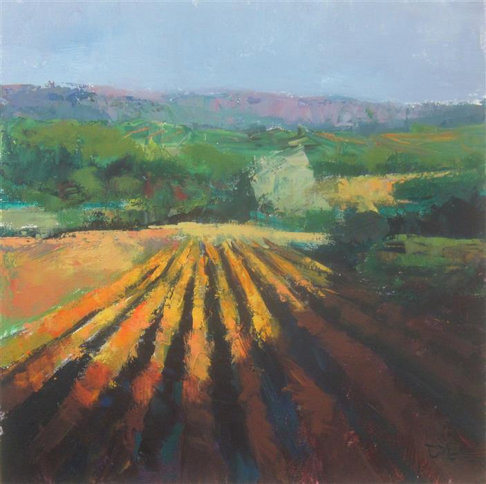 Original art for sale at UGallery.com | Fields in Sunlight, Provence by Janet Dyer | $950 | acrylic painting | 20' h x 20' w | ..\art\acrylic-painting-Fields-in-Sunlight-Provence