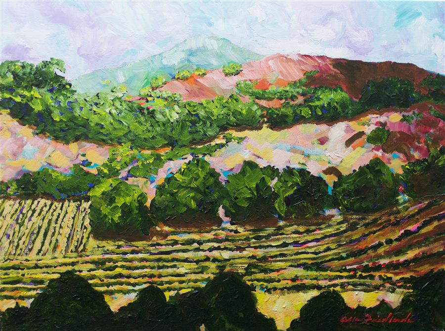 Original art for sale at UGallery.com | Valley Vineyard by ALLAN P. FRIEDLANDER | $625 |  | 18' h x 24' w | ..\art\acrylic-painting-Valley-Vineyard-60871