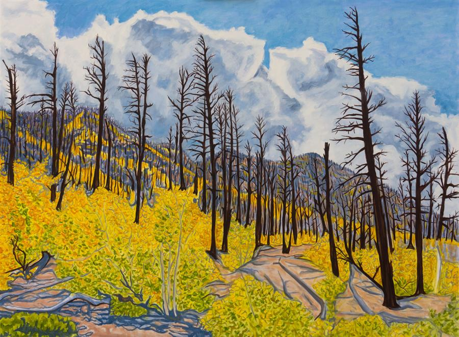 Original art for sale at UGallery.com | After the Forest Burned by Crystal DiPietro | $3,175 | oil painting | 30' h x 40' w | ..\art\oil-painting-After-the-Forest-Burned