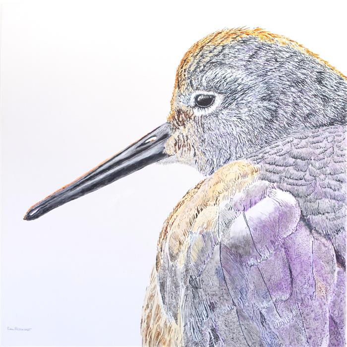 Original art for sale at UGallery.com | Sleepy Willet by EMIL MORHARDT | $1,600 |  | 30' h x 30' w | ..\art\acrylic-painting-Sleepy-Willet